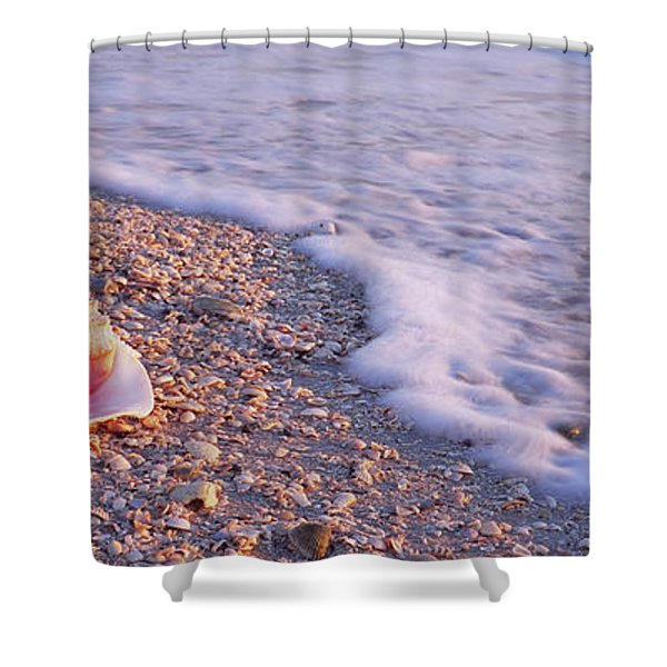 Seashell On The Beach, Lovers Key State Shower Curtain