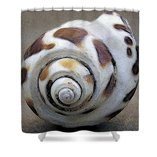 Seashells Spectacular No 2 Shower Curtain