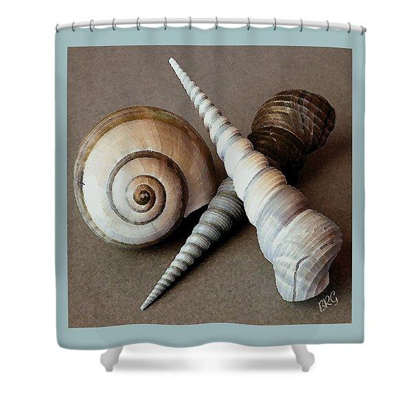 Seashells Spectacular No 24 Shower Curtain