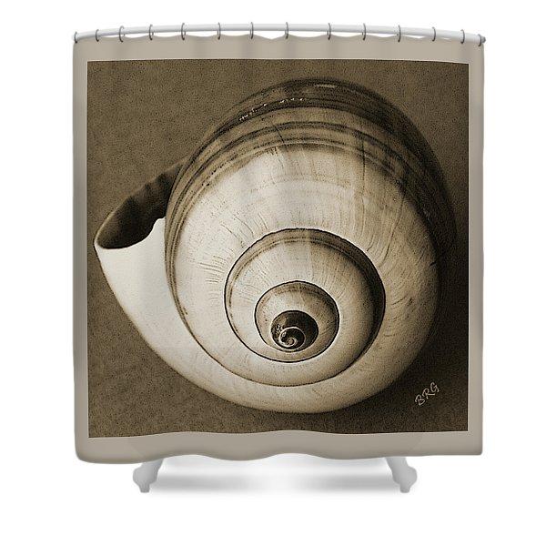 Seashells Spectacular No 25 Shower Curtain