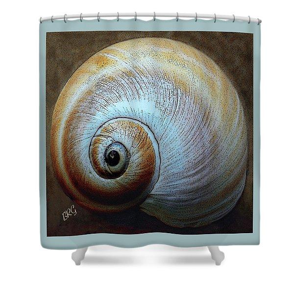 Seashells Spectacular No 36 Shower Curtain