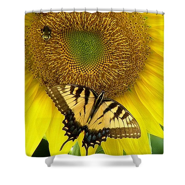 Secret Lives Of Sunflowers Shower Curtain