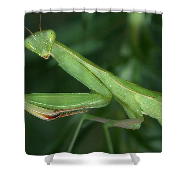 Seeing Green Shower Curtain