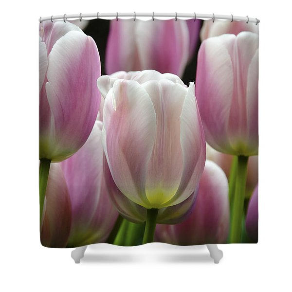 Seeing Pink Shower Curtain