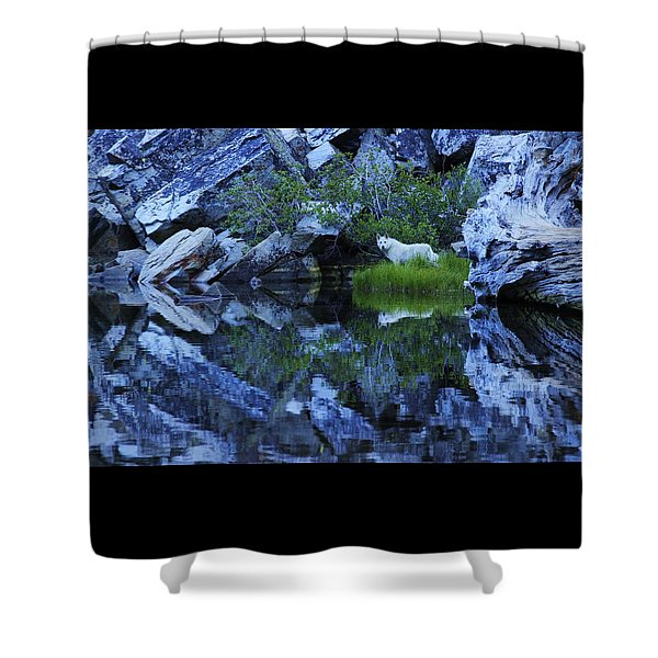 Shower Curtain featuring the photograph Sekani Wild by Sean Sarsfield