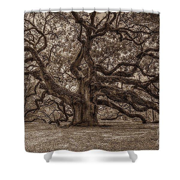 Sepia Angel Oak Shower Curtain