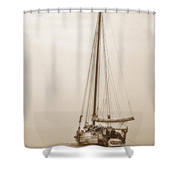 Sepia Minnie V Shower Curtain