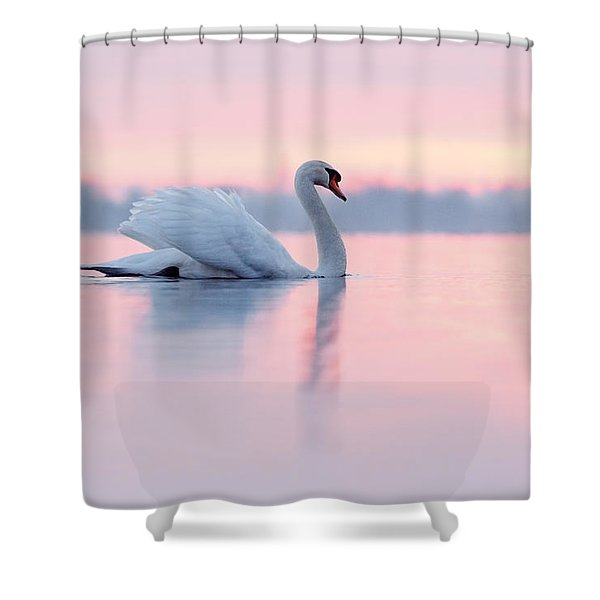 Serenity   Mute Swan At Sunset Shower Curtain