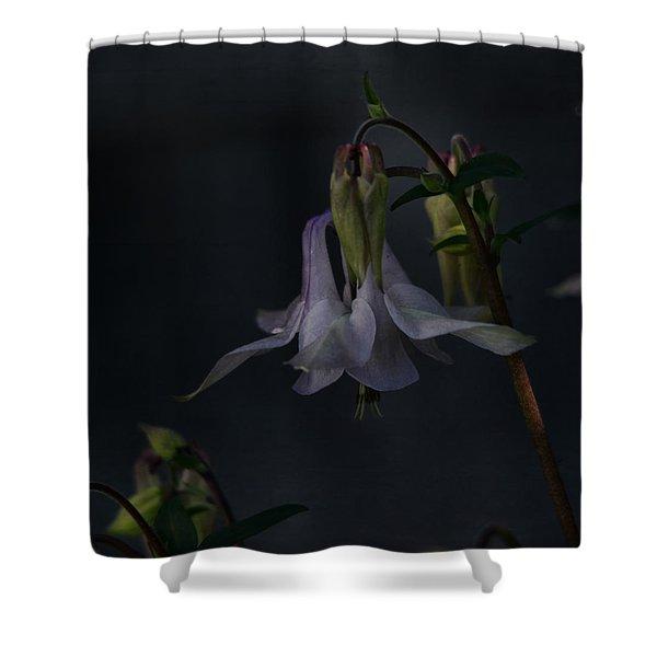 Shade Garden Jewell Shower Curtain
