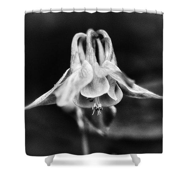 Shady Columbine Shower Curtain