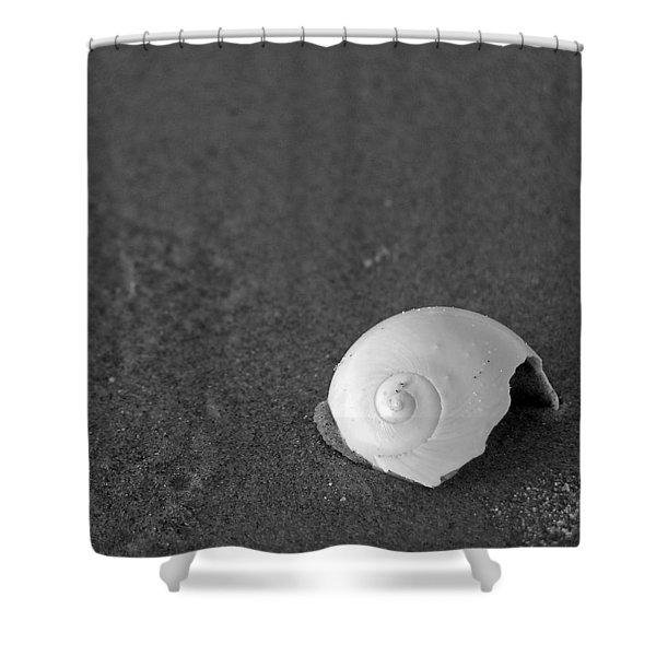 Shark's Eye In The Sand Shower Curtain
