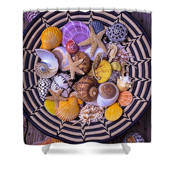 Shell Collecting Shower Curtain