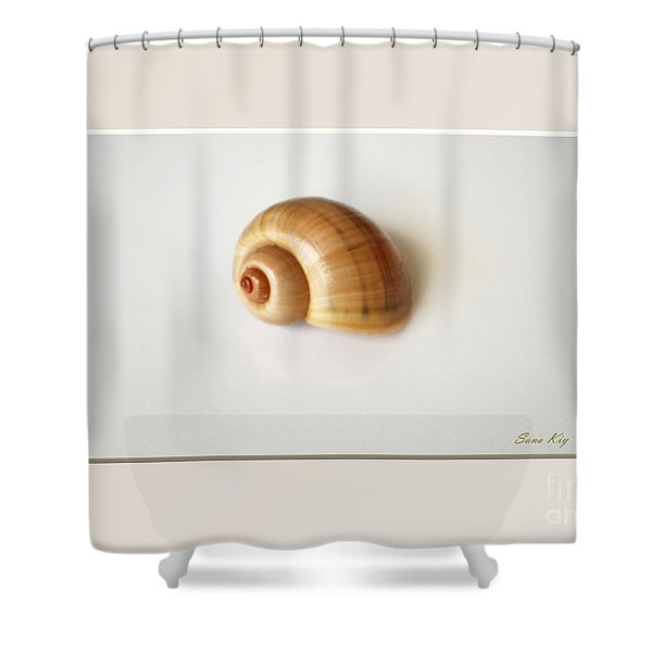 Shell. Delicate Colors Shower Curtain