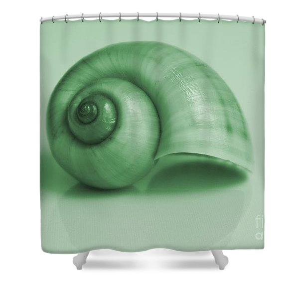 Shell. Light Green Shower Curtain