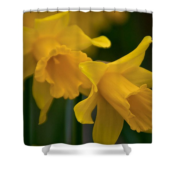 Shout Out Of Spring Shower Curtain
