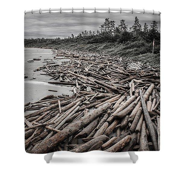 Shoved Ashore Driftwood  Shower Curtain