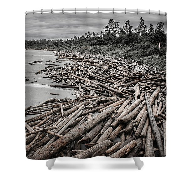 Shoved Ashore Driftwood  Shower Curtain