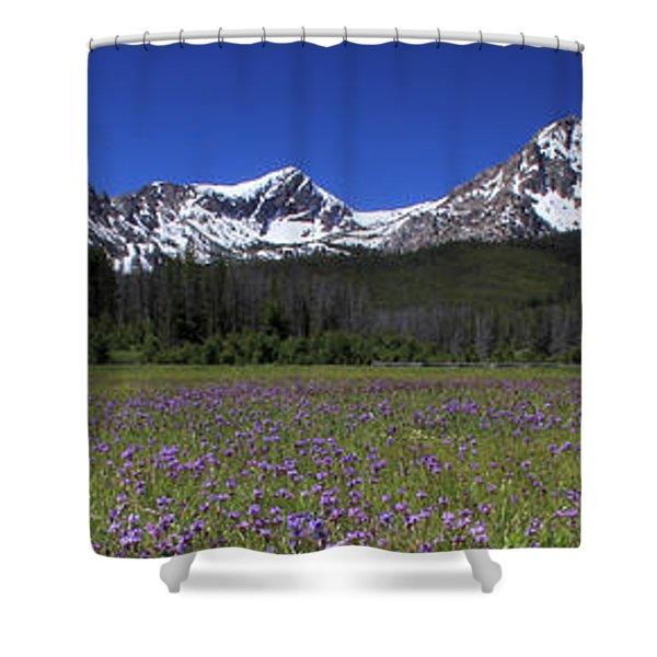 Showy Penstemon Wildflowers Sawtooth Mountains Shower Curtain