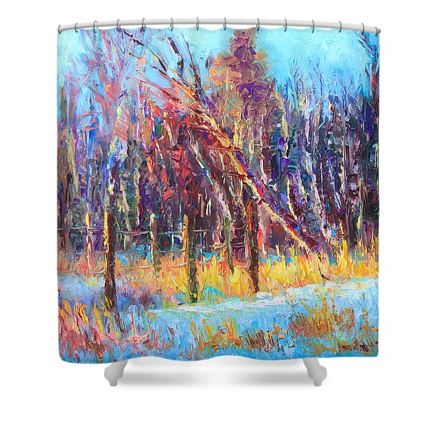 Signs Of Spring - Trees And Snow Kissed By Spring Light Shower Curtain