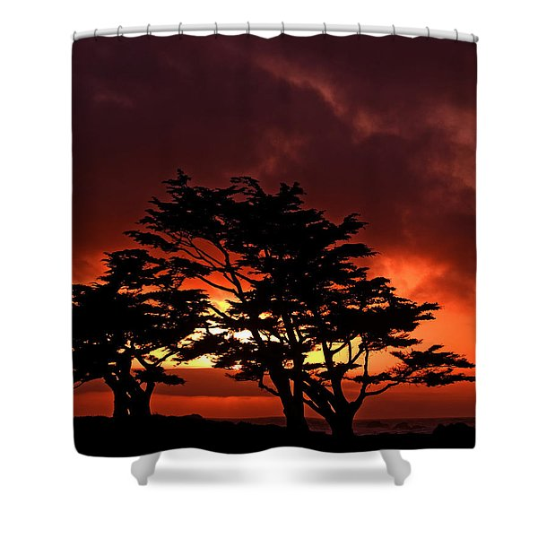 Silhouetted Cypresses Shower Curtain