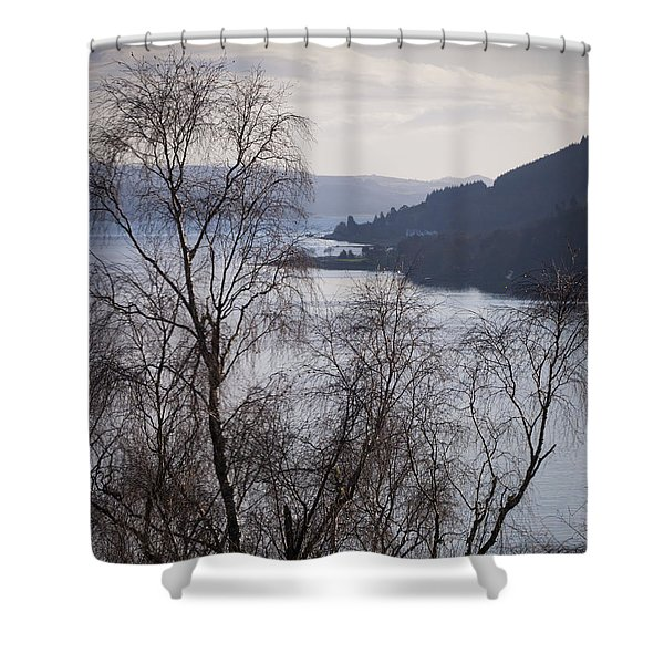 Silver Birches Above Loch Long  Shower Curtain