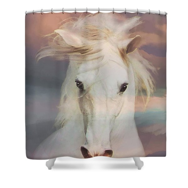 Shower Curtain featuring the photograph Silver Boy by Melinda Hughes-Berland