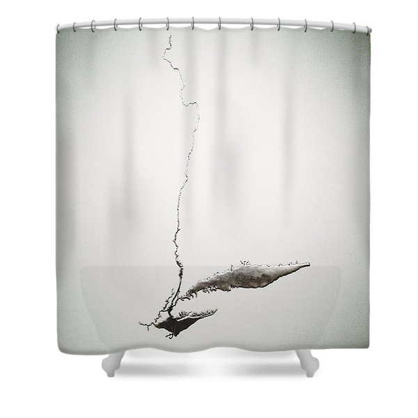 Silver Hudson By Maya Lin Shower Curtain