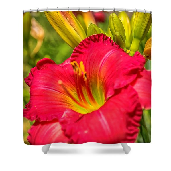 Simple Lily Shower Curtain
