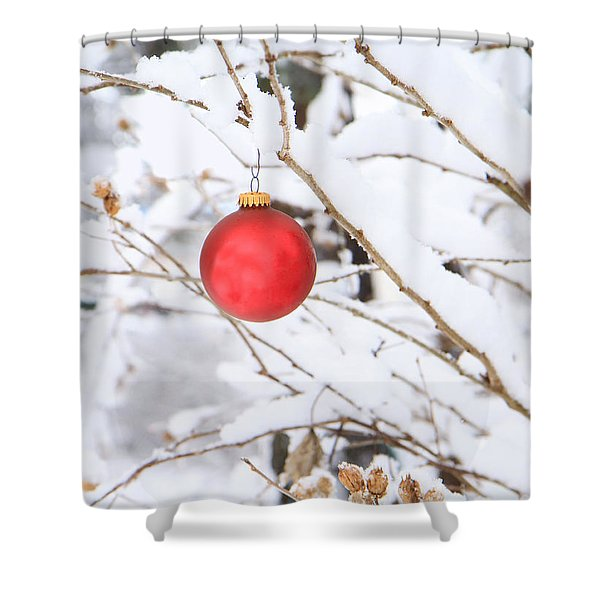 Wintertime Accent Shower Curtain