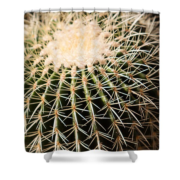 Shower Curtain featuring the photograph Single Cactus Ball by John Wadleigh