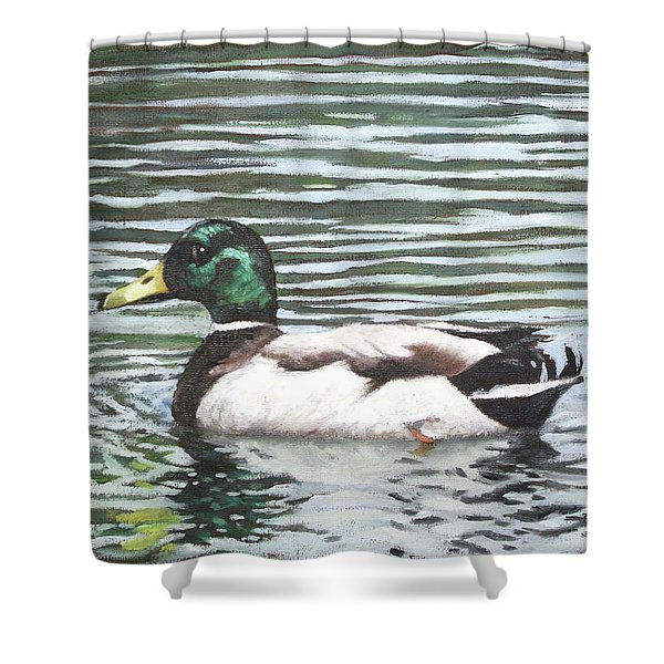 Single Mallard Duck In Water Shower Curtain
