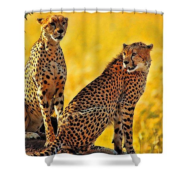 Sister Cheetahs Shower Curtain