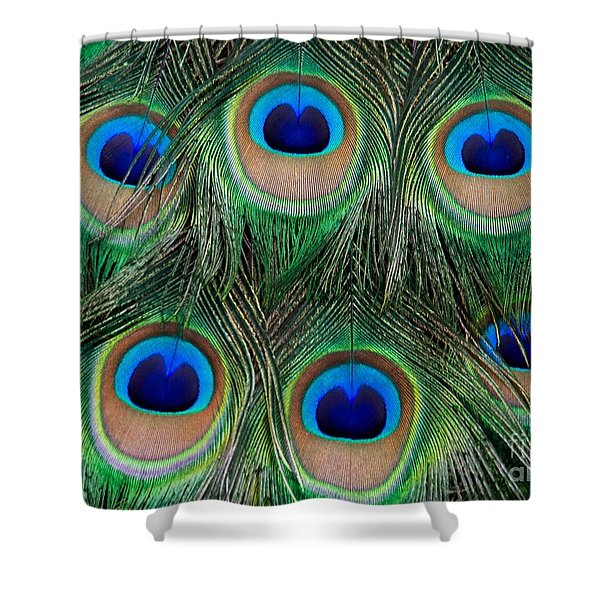 Six Eyes Shower Curtain