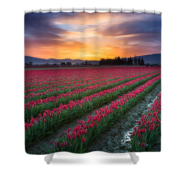 Skagit Valley Predawn Shower Curtain