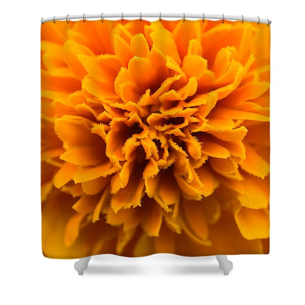 Skunk Flower Orange Shower Curtain