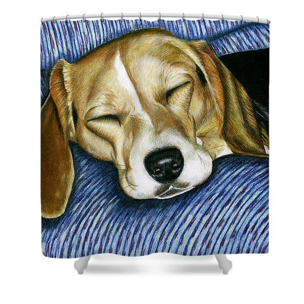 Sleeping Beagle Shower Curtain