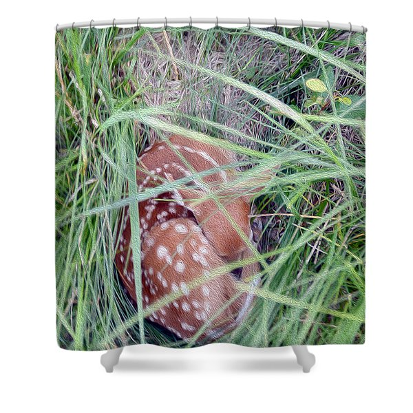 Sleeping Fawn 2 Shower Curtain
