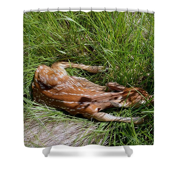 Sleeping Fawn Shower Curtain