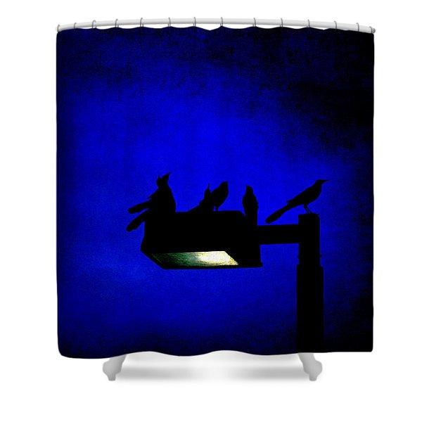 Sleepless At Midnight Shower Curtain