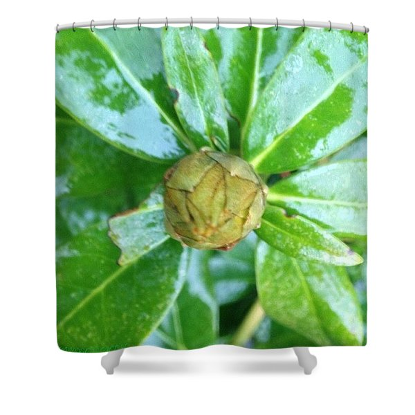 Slippery, Green And Wet! Rhododendron Shower Curtain