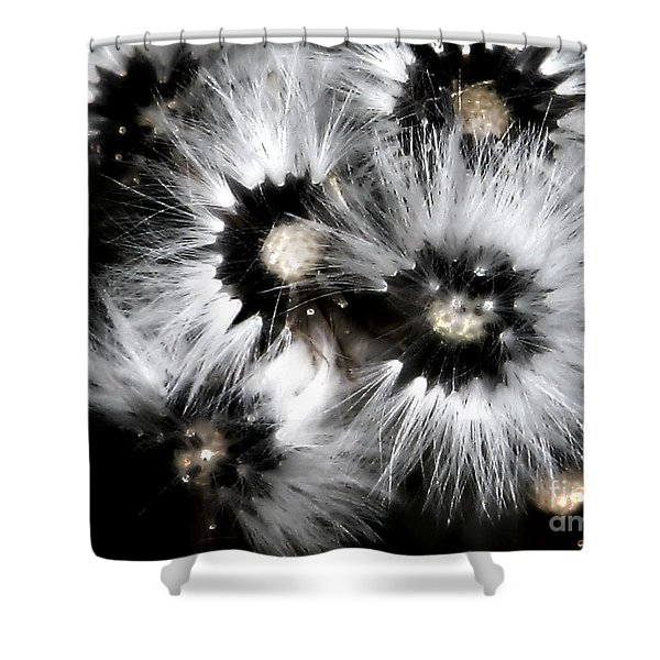 Small Worlds Shower Curtain