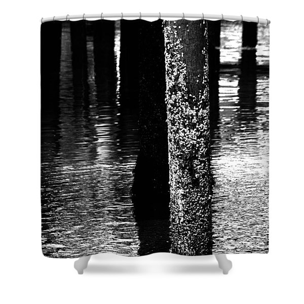 Snails In Black And White Shower Curtain