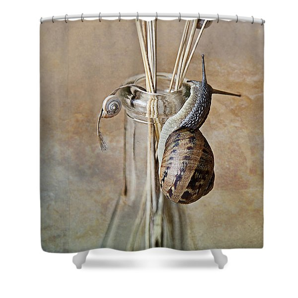 Snails Shower Curtain