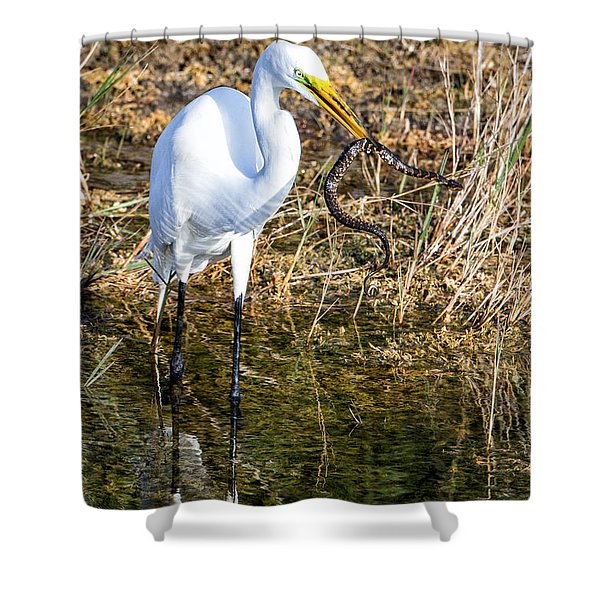 Snake For Lunch Shower Curtain