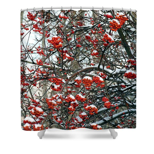 Snow- Capped Mountain Ash Berries Shower Curtain