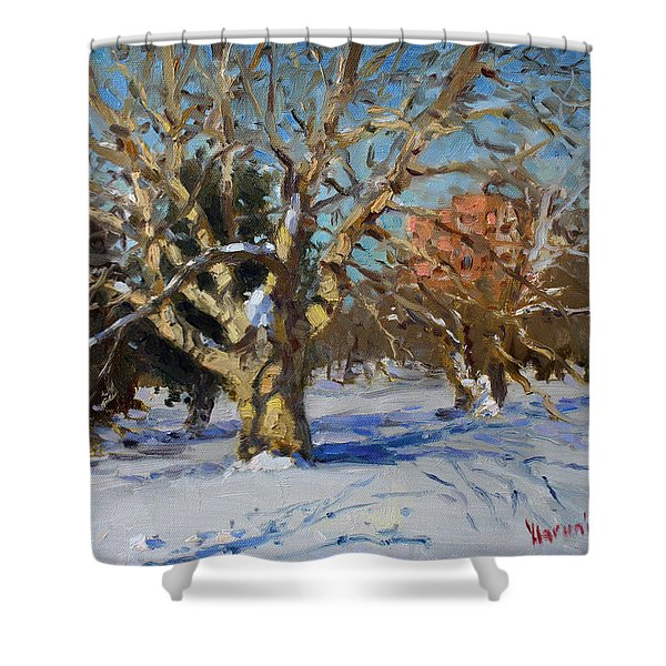 Snow In Goat Island Park  Shower Curtain