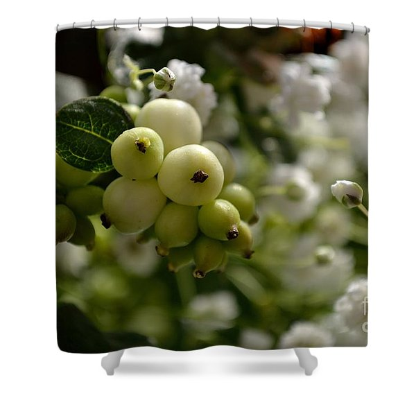 Shower Curtain featuring the photograph Snowberries by Scott Lyons