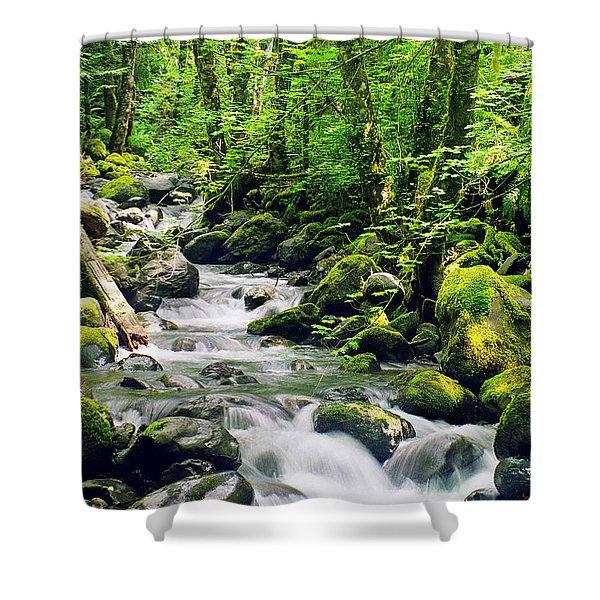 Snowmelt Shower Curtain