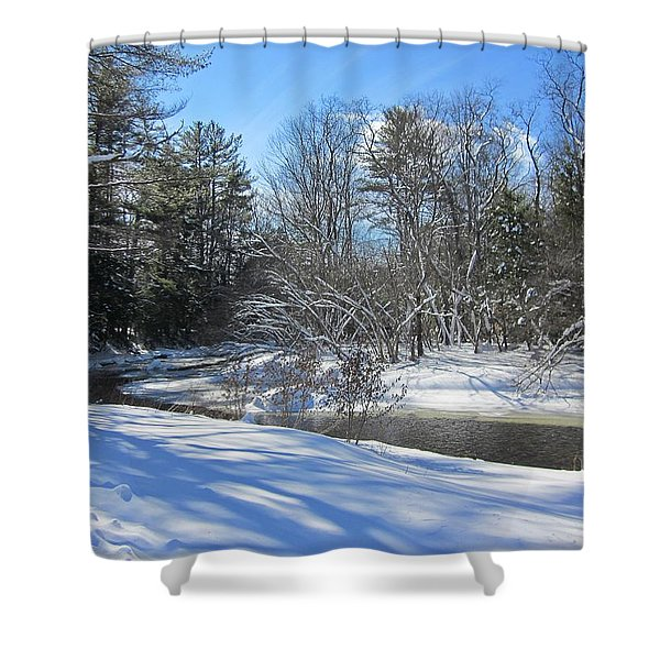 Snowy Otter Brook Shower Curtain