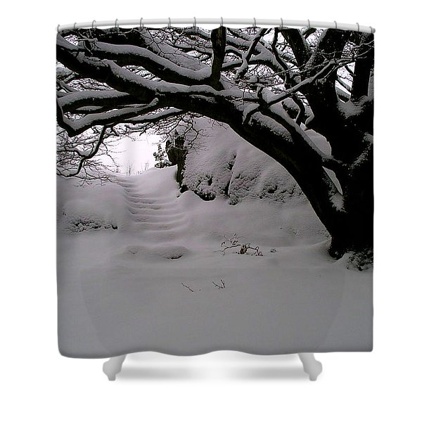 Snowy Path Shower Curtain